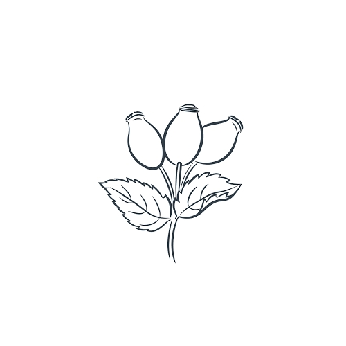 Rosehip Organic ltd